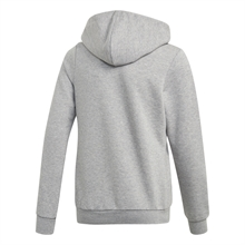 Linear Full-Zip Hoodie Grå Junior baksida