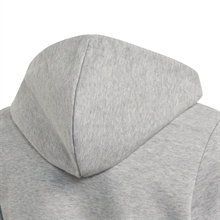 Linear Full-Zip Hoodie Grå Junior huva