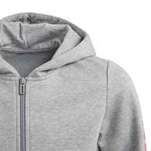 Linear Full-Zip Hoodie Grå Junior zipper